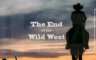 Why the Wild West on the PET market is about to end